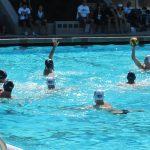 リオ五輪に挑む、水球男子日本代表の新しい戦術に期待!!